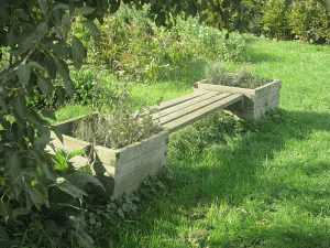 Holzbank inmitten der Blumenfelder