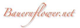 Bauernflower Logo